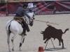 Pedro Nuno Neves v The Bull