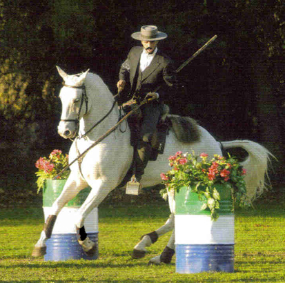 6 The Art of Working Equitation.